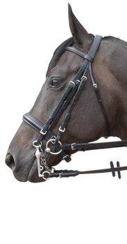Harry's Horse luxe stang en trens hoofdstel Full