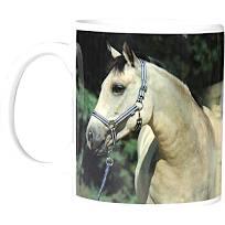 Mok Pony